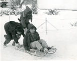 Boys sledding in snow, 1 of 2, n.d.