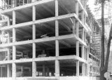 Business Administration Building construction site, circa 1951