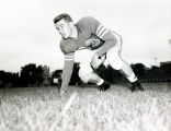 John Scanlon crouches in a three point stance, 1952