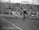 A Marquette football player catches the ball while Holy Cross players close in, 1955