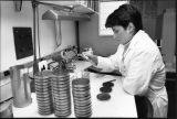 A medical technician works at a desk with samples and petri dishes, circa 1988
