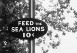 "Sign reading """"Feed the Sea Lions, 10 cents,"""" 1972-1973"