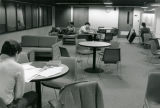 Students study in the lounge of David A. Straz, Jr. Hall