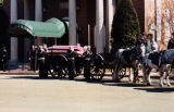 The flag-draped casket of Liuetenant Mike Allard is poised for transport on a horse-drawn limbers...