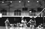 Kelly (Schramka) Steinmetz hits volleyball over net, 1975
