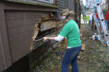A Marquette student rips off rotting wood as a part of Hunger Clean-Up, 2001