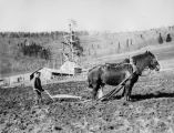 Eskimo man plowing, 1927? - 1939?