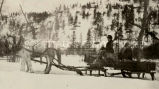 Women in horse drawn sleigh, n.d.