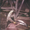 Native woman filleting salmon, 1958? - 1965?