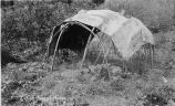 Sweat lodge, 1943?